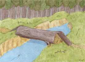 Baumbruecke - Baumstamm liegt über einem Bach - Hintergrundbild Background